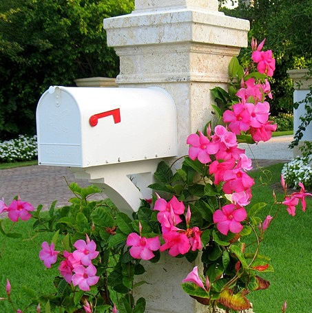 floral mailbox