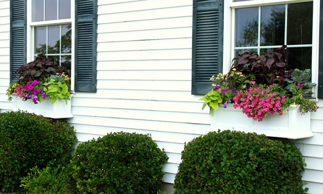 Window Box Planter Flowers Window Flower Boxes